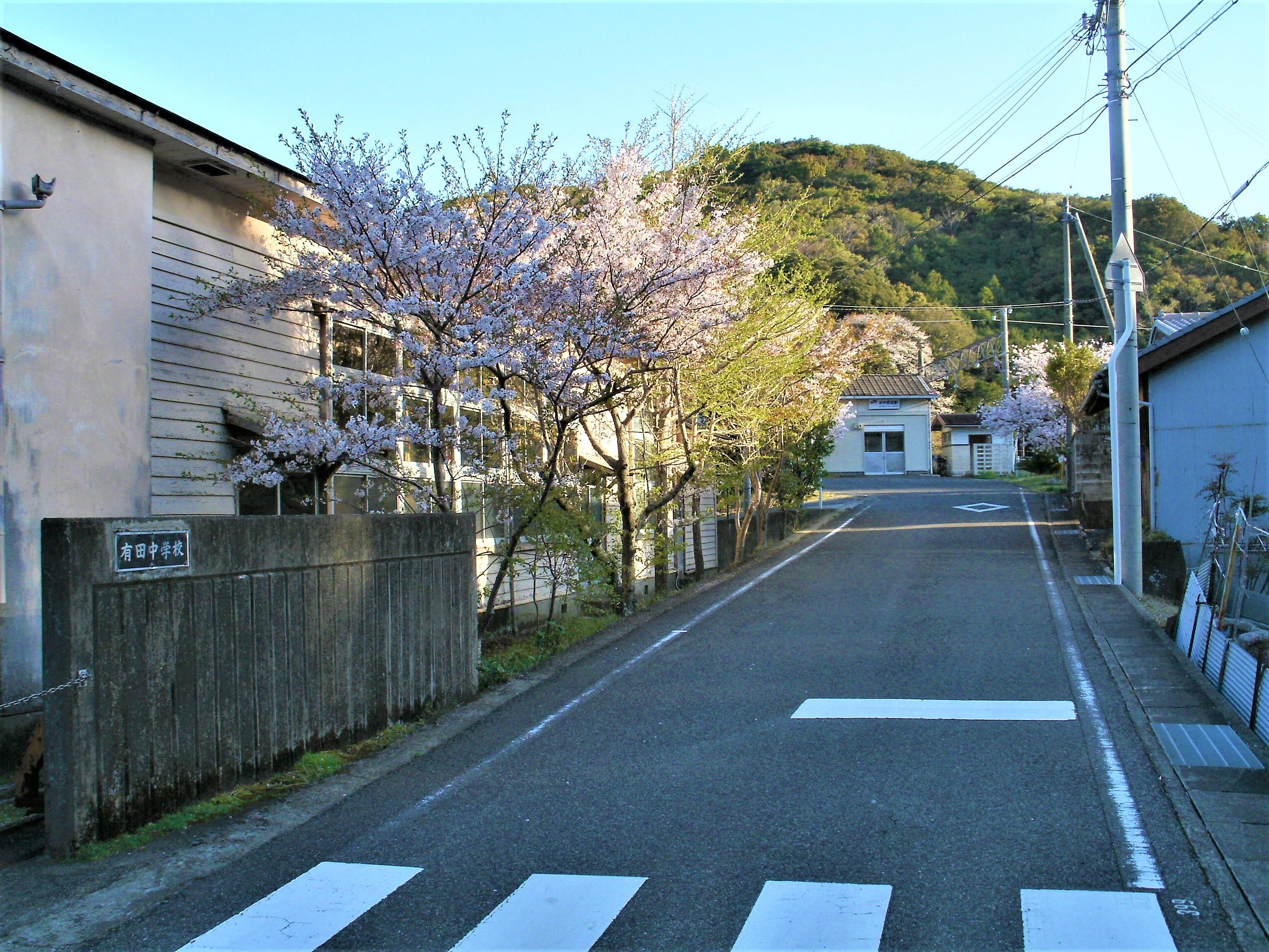 記事串本町立有田中学校 閉校のイメージ画像