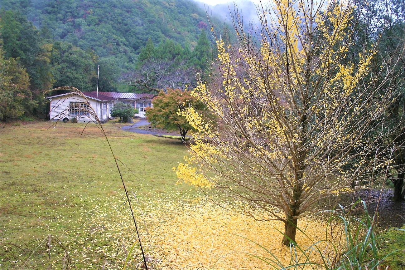 記事熊野川町立鎌塚小学校 閉校のイメージ画像