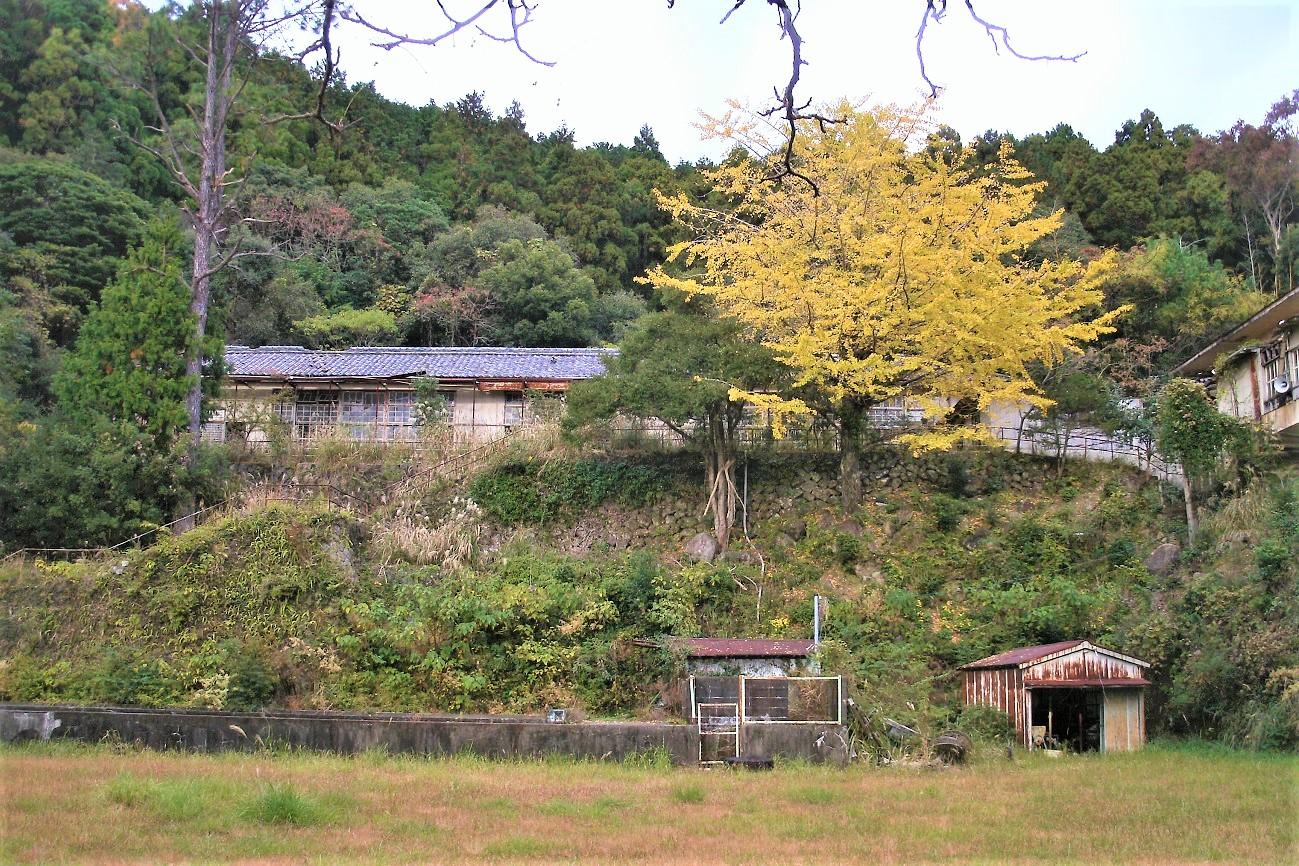 記事那智勝浦町立妙法小学校 休校のイメージ画像