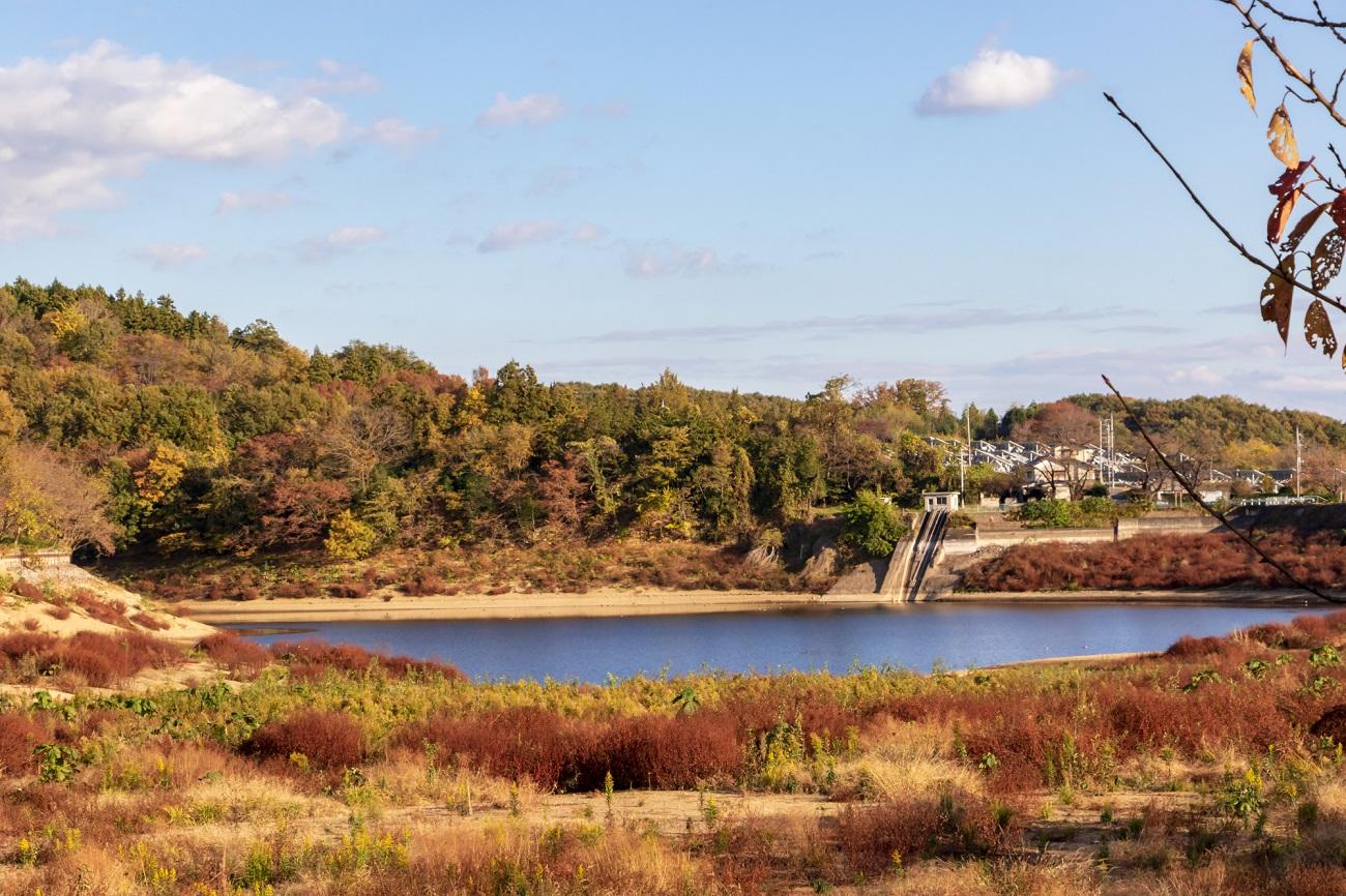 記事丹生湖釣り場 閉鎖のイメージ画像