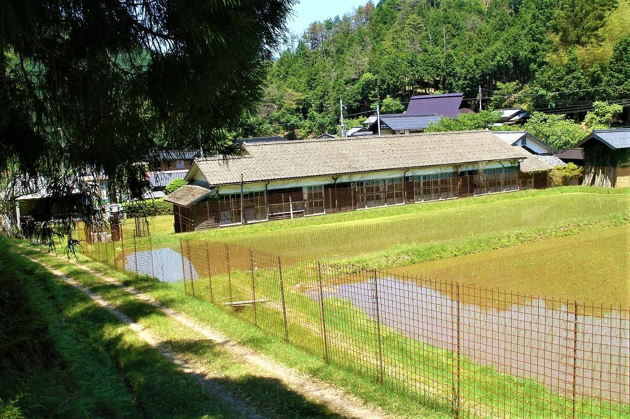 記事京丹後市立五箇小学校 成路分校 閉校のイメージ画像