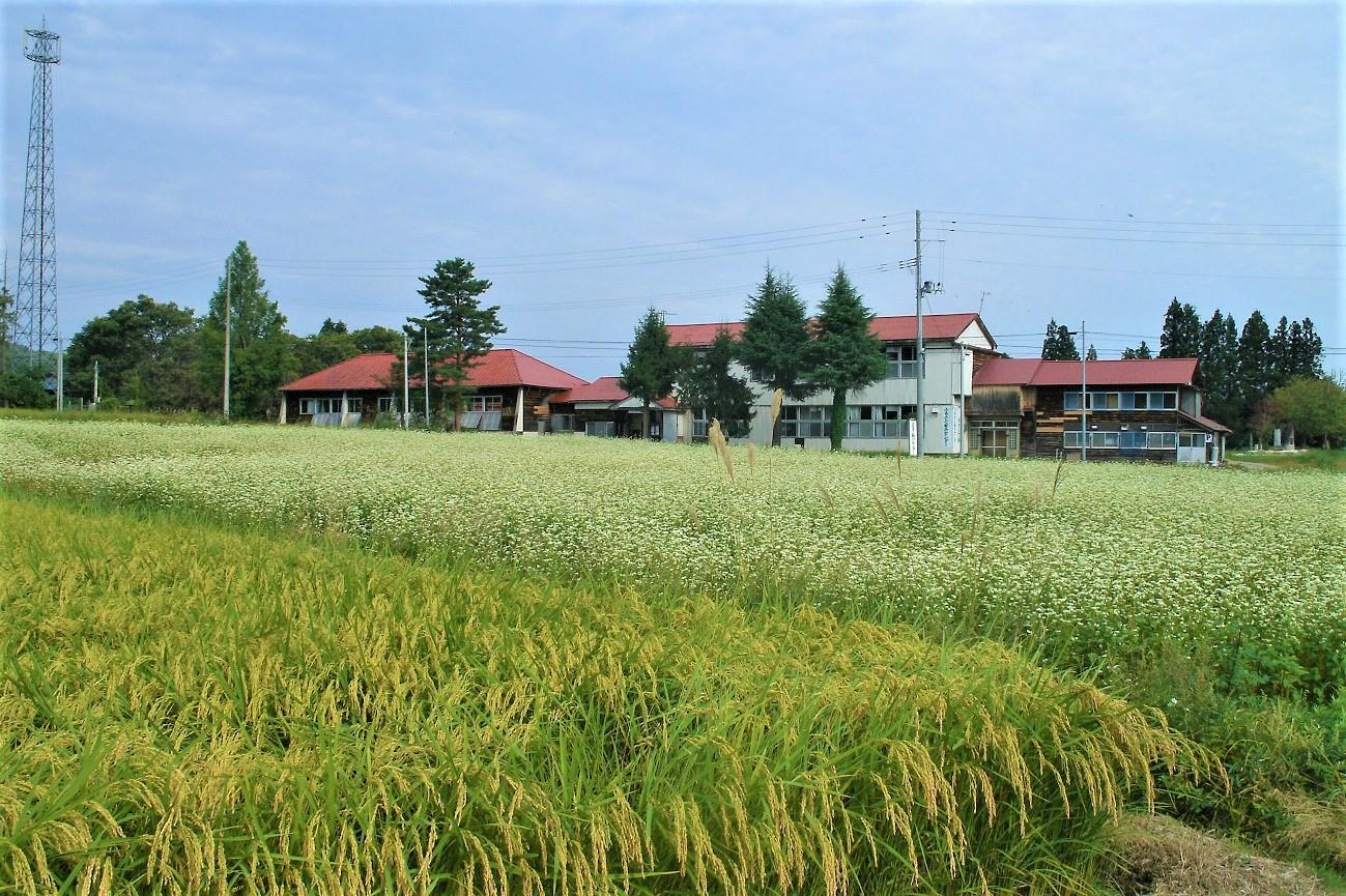 記事山形県立置賜農業高校 玉庭分校 閉校のイメージ画像
