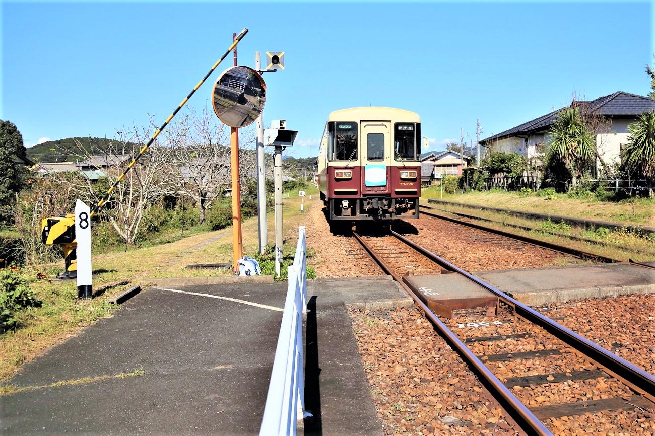 記事天竜浜名湖鉄道 TH3501[マリメッコ列車] 運行終了のイメージ画像